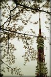当時の東京タワー