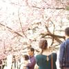 2016年02月14日_新宿御苑