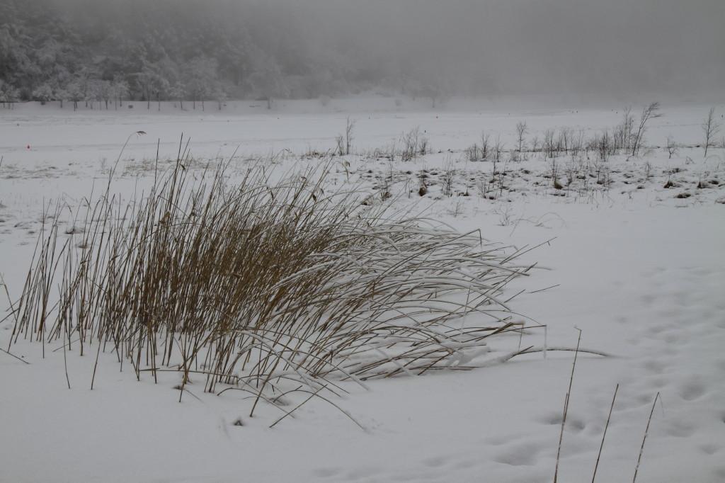 風が雪の湖面を走る