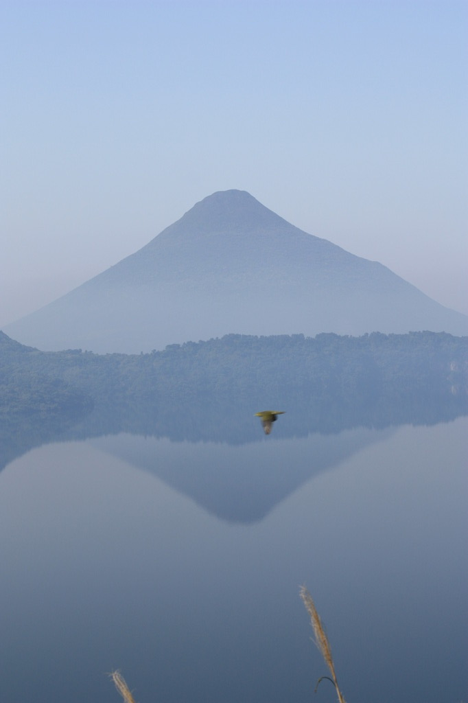 開聞岳と野鳥