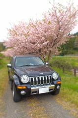 Jeep2 (ミニチュア)