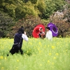 Wedding Hanami
