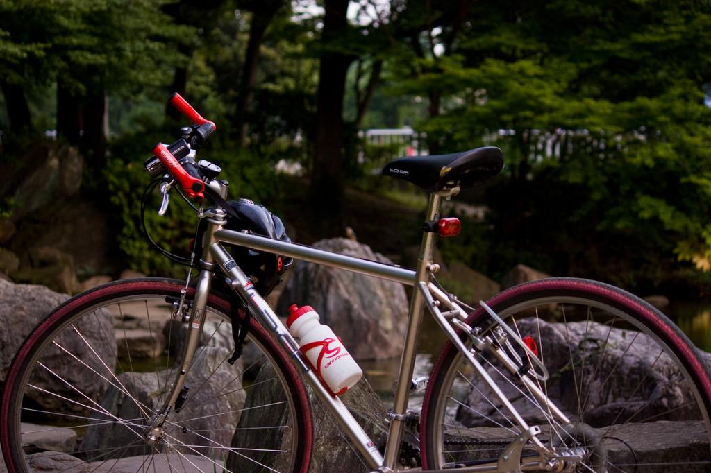 僕と自転車とカワセミ(1)