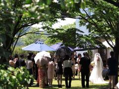 6月の花嫁
