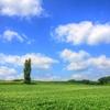 雲と大地の距離