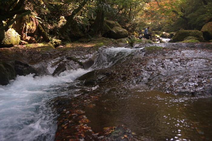 菊池渓谷2009