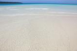 白砂が眩しすぎ