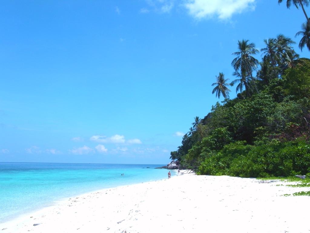 海とビーチとジャングルと(改)
