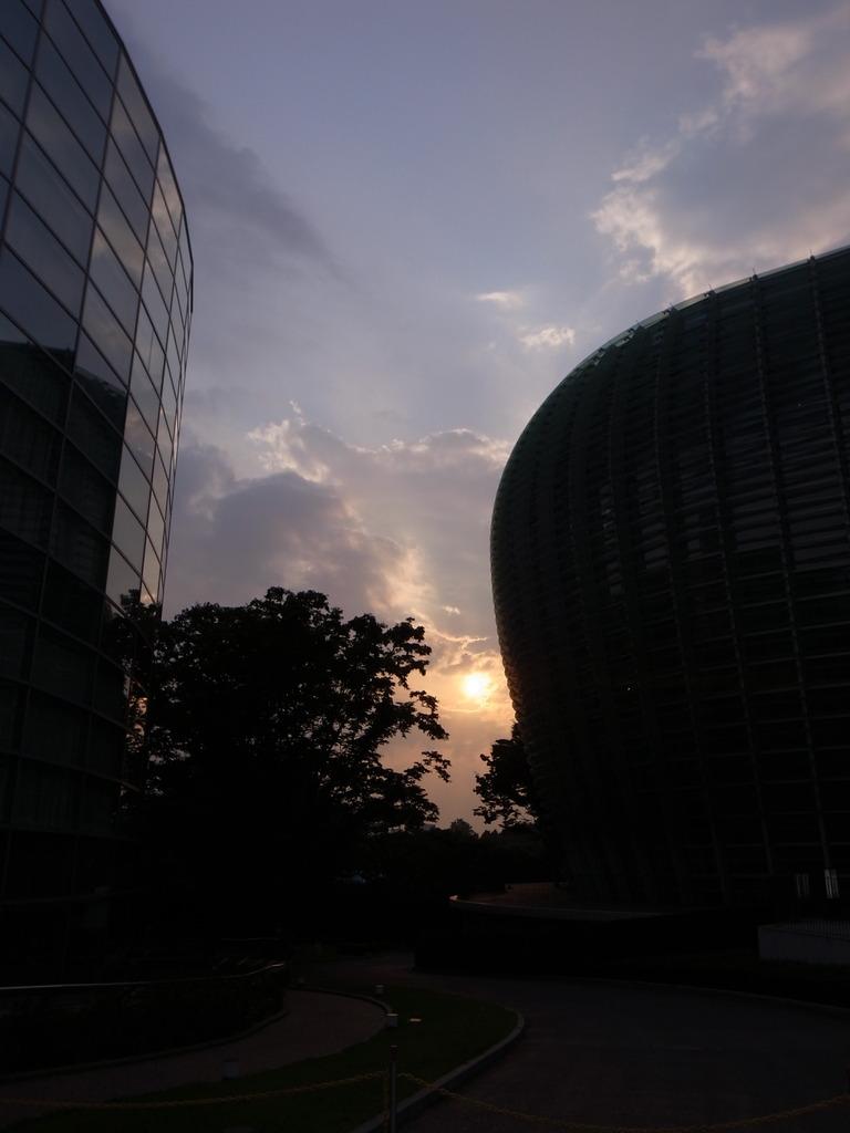 SUN SET MUSIUM 1