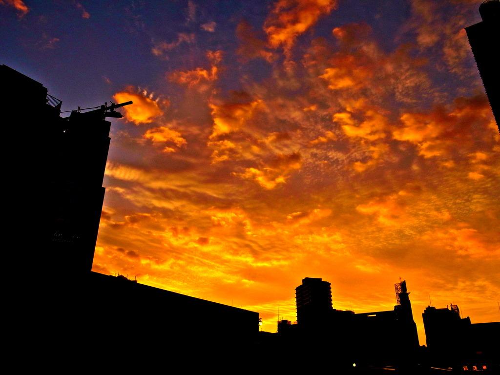 Sun Rise Tokyo 1