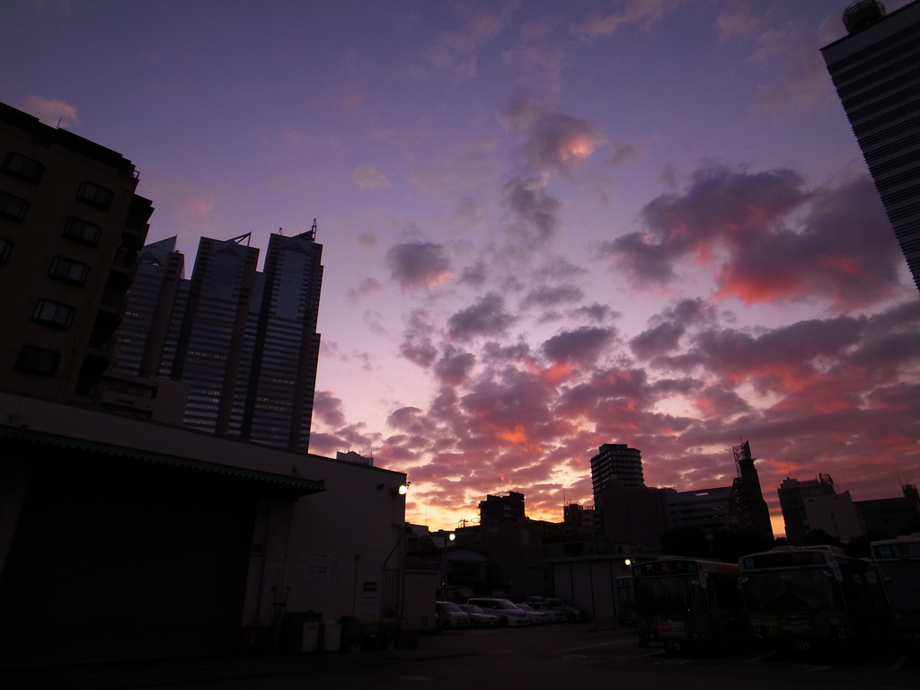 Shinjyuku Sun Rise