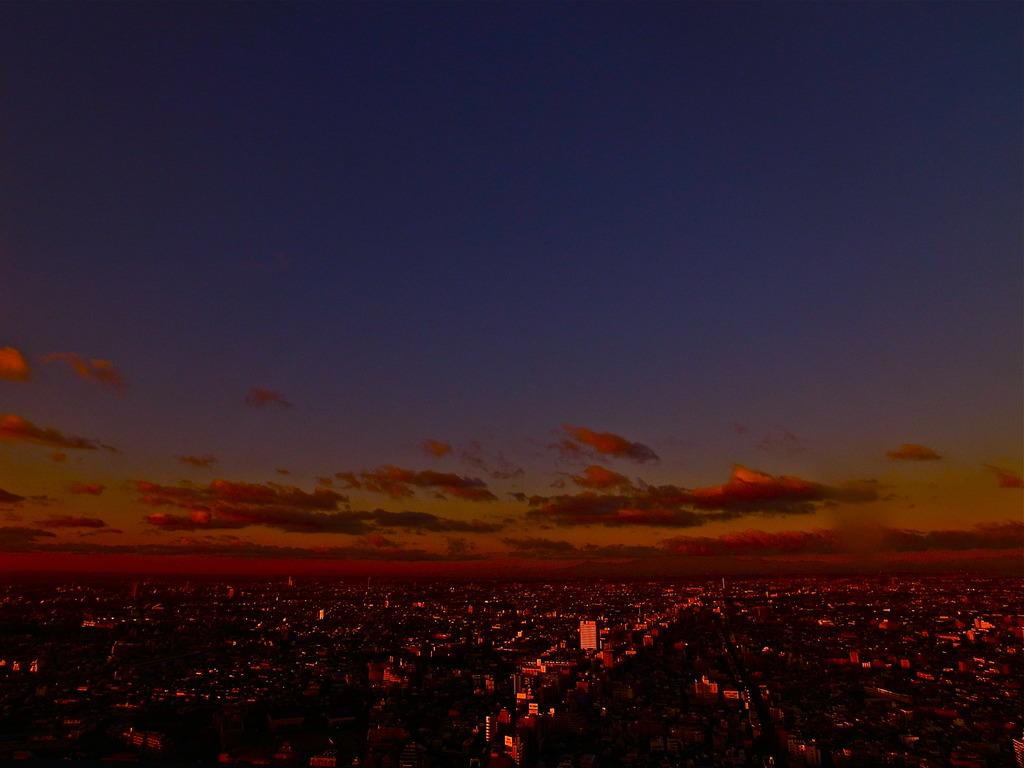 Sun Rise Shinjyuku
