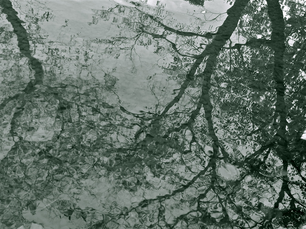 水面のグラデーション