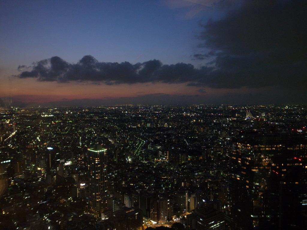 Shinjyuku Sunset 2