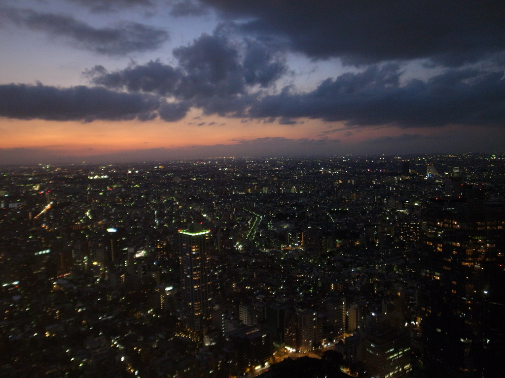 Shinjyuku Sunset 1