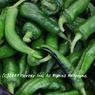 CANON Canon EOS 30Dで撮影した食べ物(唐辛子色の夏)の写真(画像)