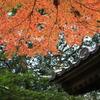 北鎌倉の秋