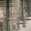 池の水面に冬木立