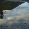 雨上がりの国道55線