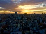 東京サンライズ