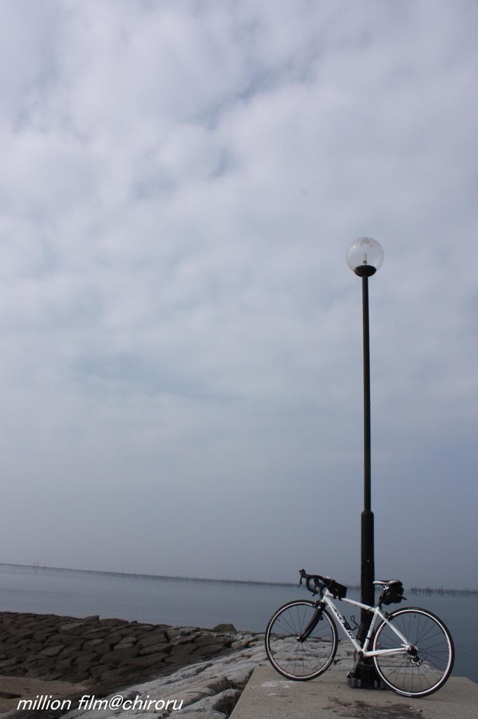 大好きな海へ