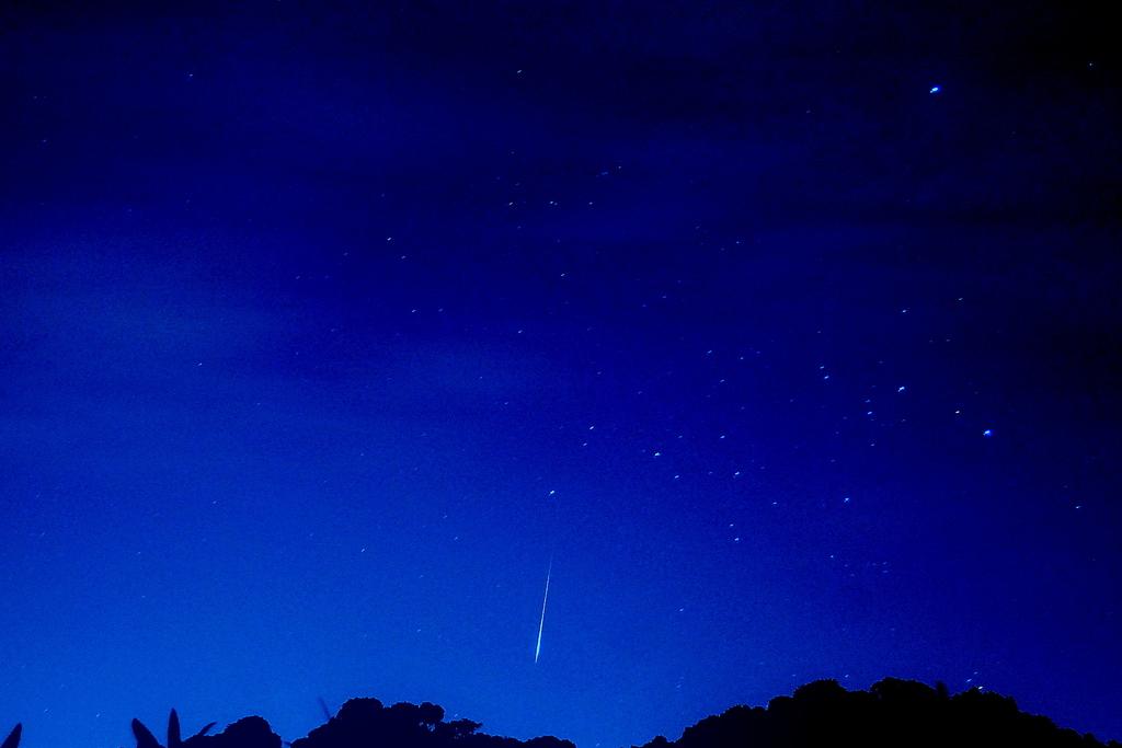 オリオン座流星群2009