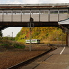 秋のローカル駅