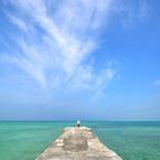 NIKON NIKON D90で撮影した風景(A sense of freedom)の写真(画像)