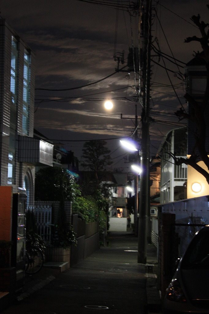 月明かり。