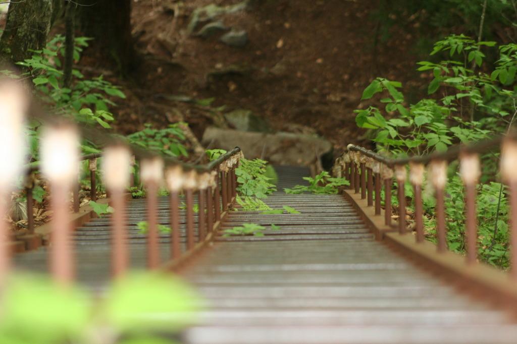 はしご階段