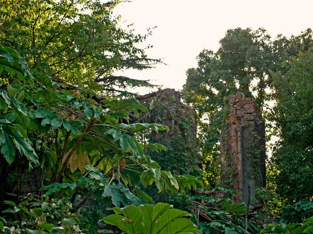 the ruins part2 at KOBE