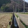 伊豆の農水路