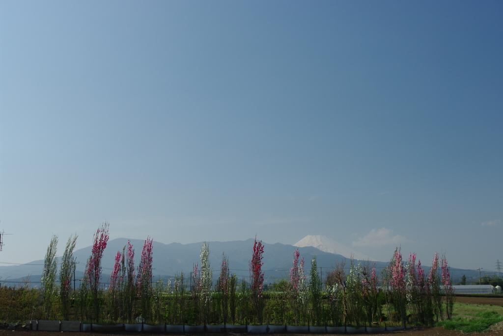 花達の入学式