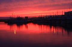紅色に染まる港