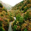 彩りに包まれる峡谷