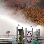 SONY DSLR-A900で撮影した植物(秋の散水)の写真(画像)