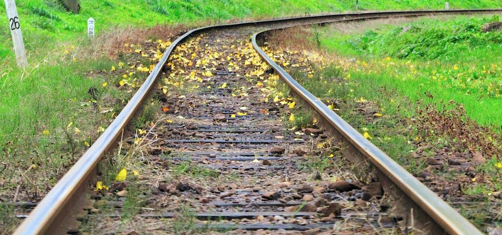 銀杏色の線路