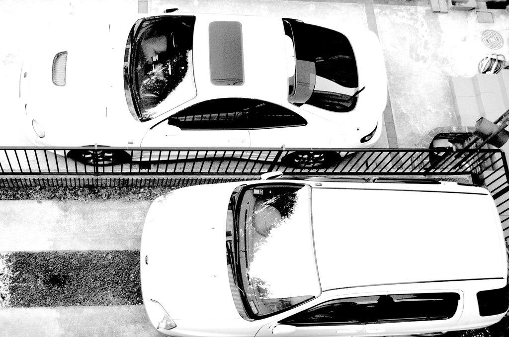 two white