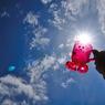 NIKON NIKON D90で撮影したインテリア・オブジェクト(夏に乾杯)の写真(画像)