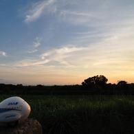 NIKON NIKON D90で撮影したインテリア・オブジェクト(岩木山夕景 ANA君慕情)の写真(画像)