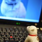 NIKON NIKON D90で撮影したインテリア・オブジェクト(わしも笑ってみたい♪)の写真(画像)
