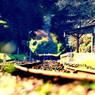 NIKON NIKON D300で撮影した乗り物(月崎駅)の写真(画像)
