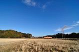 冬枯れ 単行列車