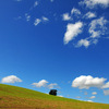 一日中雲を見ていたい