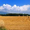 牧草ロールと夏空