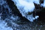 横から雪ぼんぼり
