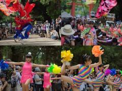 バサラ祭り(一の鳥居内パレード) #12