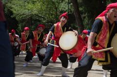 バサラ祭り(一の鳥居内パレード) #6
