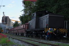 貨物列車と彼岸花 #1