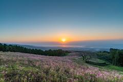 白木峰高原の朝